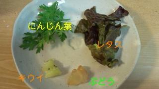 141031_203738_ed.jpg