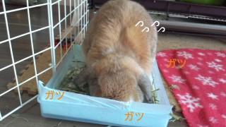 141230_093150_ed.jpg