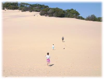 砂丘を走る