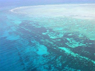 海から見たさんご礁