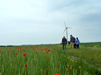 デンマーク・風車と農場