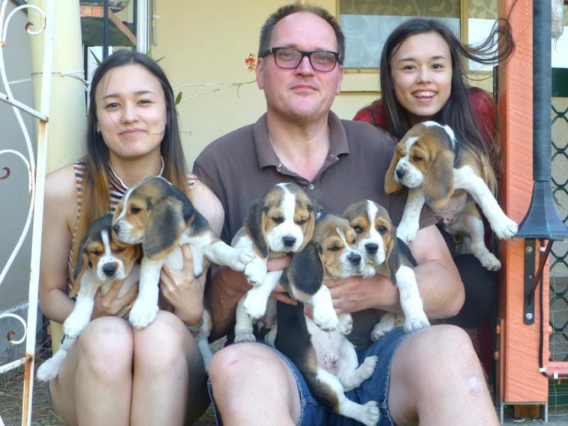 P1080424_puppies.jpg