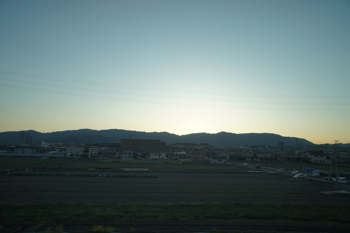 DSC03438.jpg