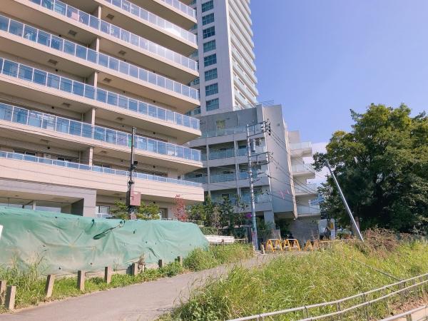 武蔵 小杉 タワー マンション 浸水