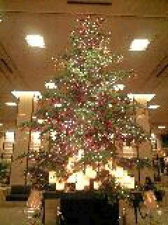クリスマスツリー。-0001.JPG