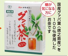 有機栽培のグァバ茶