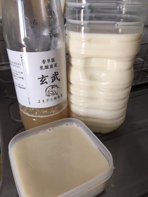 ちゃーんと出来たよ豆乳ヨーグルト