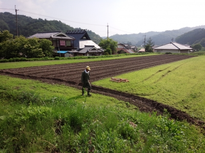 2014.6.15佐々木さん家の黒豆まきと柵立て 2014-06-15 004.jpg