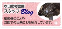 bnr_blog.jpg