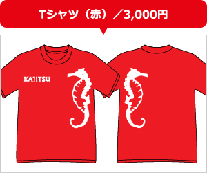 Tシャツ(赤)/3,000円