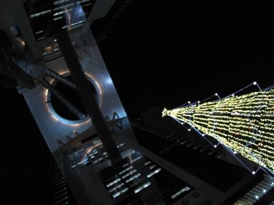 2011ドイツマーケット_ツリーから見上げる