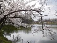 fudai_ike_right001