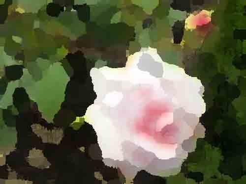 ピンクのバラ_パレットナイフ効果