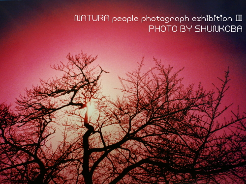 センシア NATURA people photograph exhibition ?