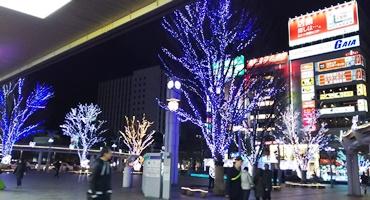 DSC_草心4.JPG