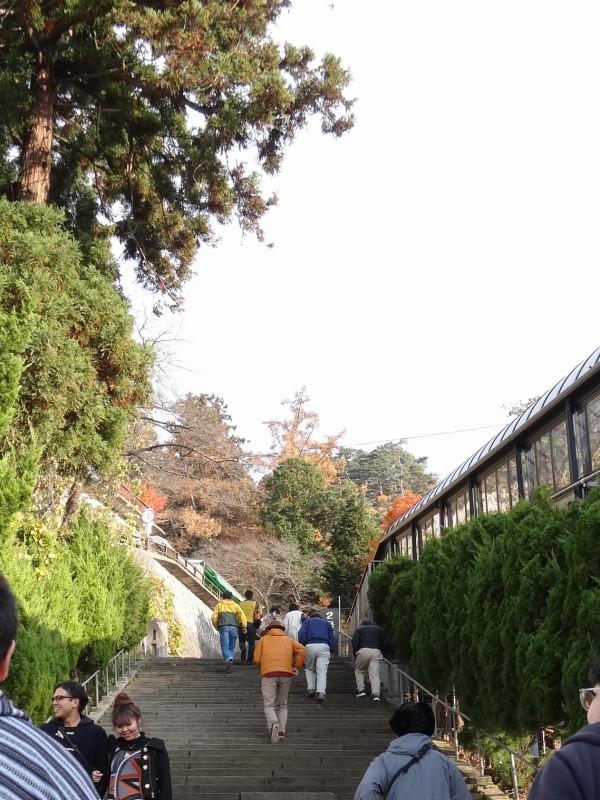 飯盛山観光