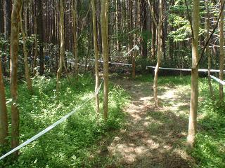 西富士中学校への道