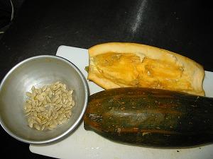 ズッキーニの種採り