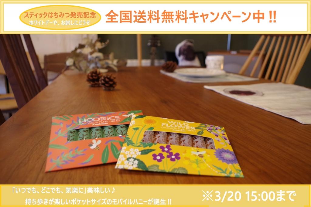 2019.3送料無料.jpg