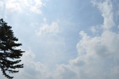 グループコンタクト 2012-6-24 館林