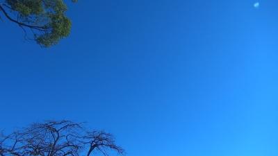 アルクトゥルス 2012-12-12 宇宙連合と手をつなごう!