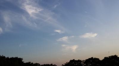 天使たちの空 シンパシー