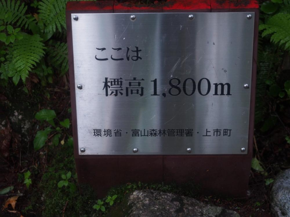tsurugi004.JPG