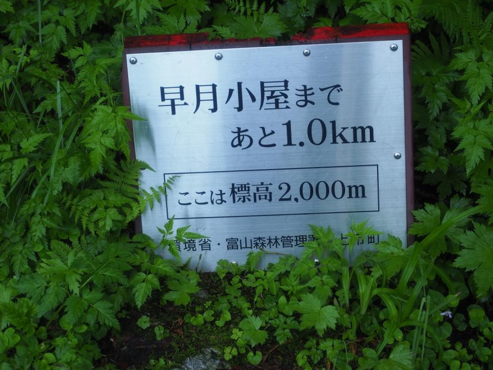 tsurugi007.JPG