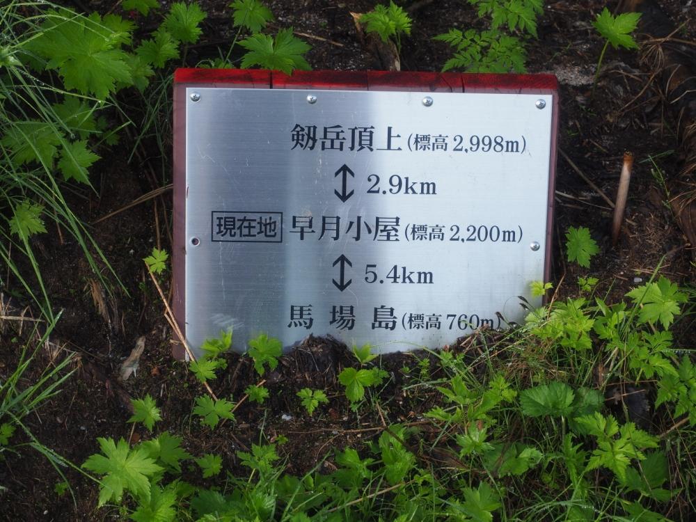 tsurugi009.JPG
