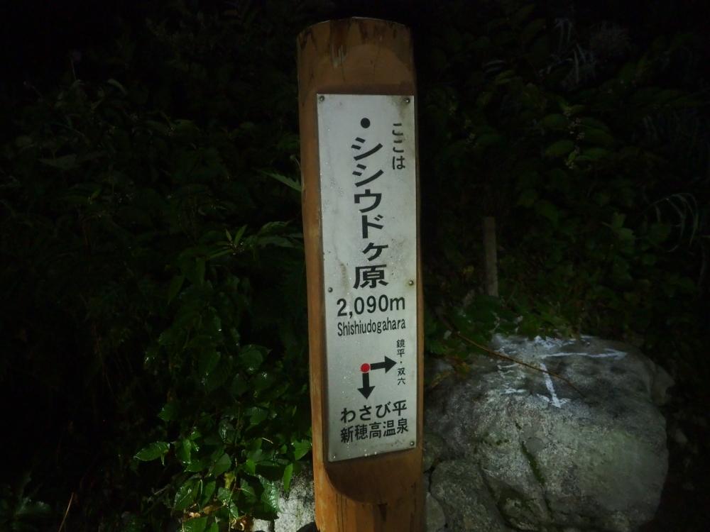 Akaushi_Yari003.JPG