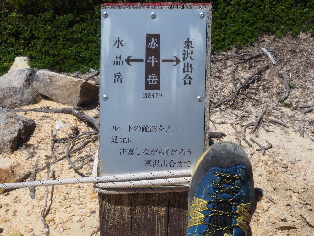 Akaushi_Yari022.JPG