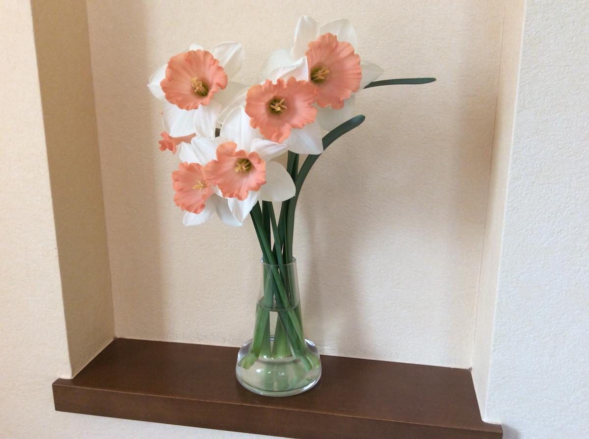 スイセンの花とFloraベース