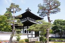 モミジの庭園が有名な東福寺