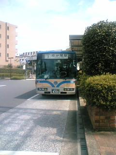 20060820_236306.jpg