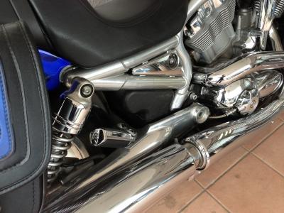 Harley Custom2