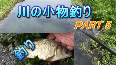 川の小物釣りPart5