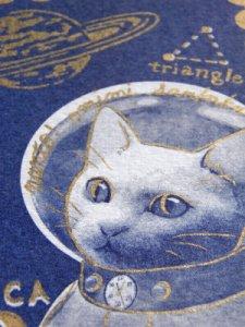 Space Cat MICA