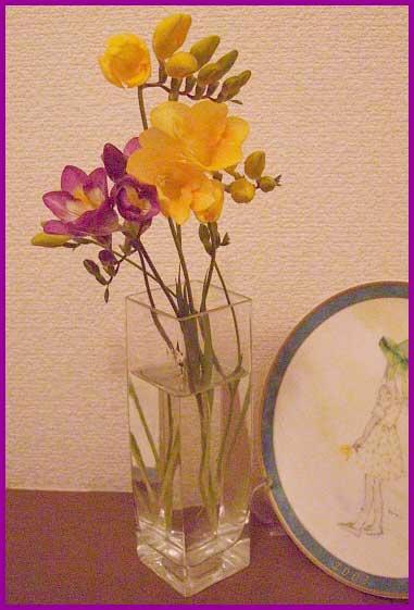 フリージア(黄・紫)