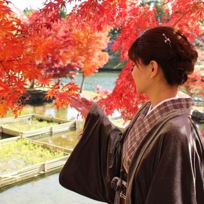 着物で紅葉。紬風の洗える着物とおとつぎ商店のベロア長羽織で。