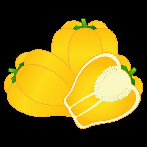 黄パプリカ