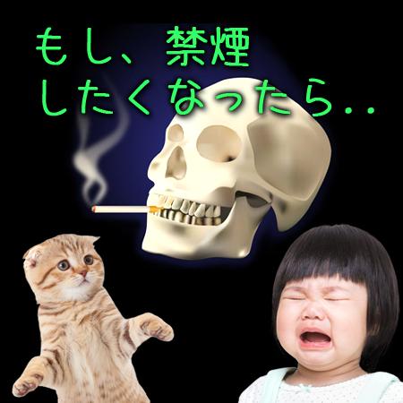 もし、禁煙したくなったら..