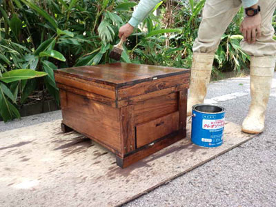 ハチ 巣箱