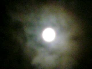 月が見ている.jpg