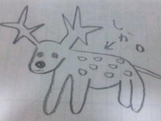 誰がなんと言おうと鹿です。.jpg