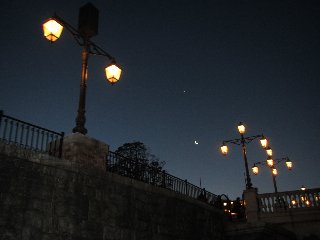 夜中Disney