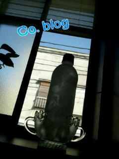 20110622_220826.jpg