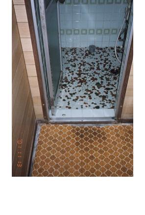 浴室段差解消前