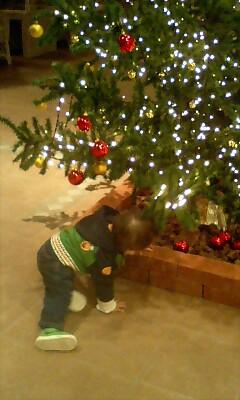 クリスマスツリーですけど