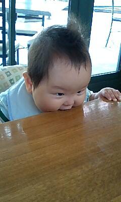 テーブルにかぶりつき