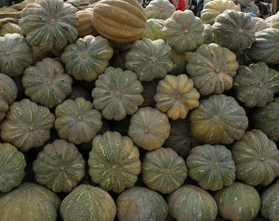 モロッコ 野菜